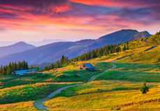 Colorful summer sunrise in mountains Stock Image