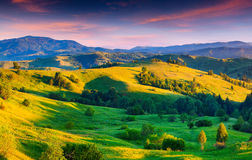 Colorful summer sunrise in the mountains. Royalty Free Stock Photo