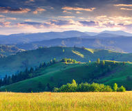 Colorful summer sunrise in the mountains. Stock Image