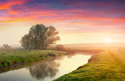 Colorful summer sunrise on river Stock Image