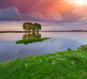 Colorful summer sunrise on river. Stock Images