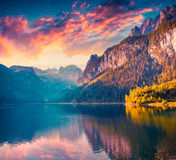 Colorful summer sunrise on the Vorderer Gosausee lake. In the Austrian Alps. Austria, Europe. Instagram toning Royalty Free Stock Photos