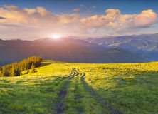 Colorful summer sunset in the Carpathian mountains. Stock Image