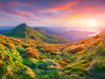 Colorful summer sunset in mountains Royalty Free Stock Image