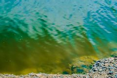 Color summer water surface. Water surface. Transparent river, lake. stock photo
