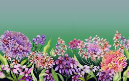 Colorful summer wide banner. Vivid iberis flowers with green leaves on gradient green background. Horizontal template. Seamless panoramic floral pattern royalty free illustration