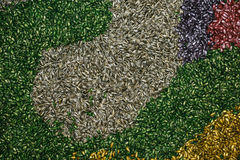 Colorful sunflower seed abstract background Royalty Free Stock Image