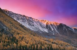 Colorful sunrise. In Altai mountains Stock Photography