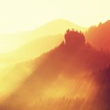 Colorful sunrise in a beautiful mountain of Czech-Saxony Switzerland. Hilly peaks increased from orange foggy background. Royalty Free Stock Image