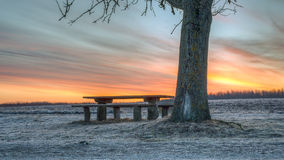 Colorful sunrise by bench and tree Stock Photo