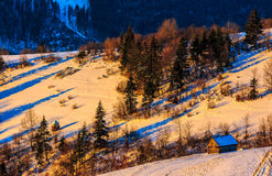 Colorful sunrise in Carpathian rural area. Woodshed on snowy rural fields near forest. colorful sunrise in Carpathian mountains Royalty Free Stock Image
