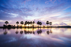 Colorful sunrise landscape with silhouettes of palm trees Stock Photos