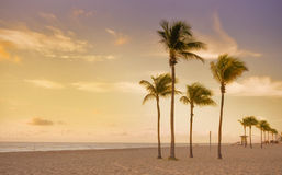 Colorful sunrise in Miami Beach Florida Royalty Free Stock Photo