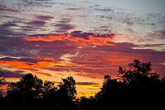 Colorful sunrise over the trees. Bright and colorful sunrise over the trees Stock Image