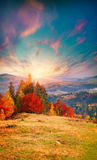Colorful sunrise sunset in the foggy mountains. Royalty Free Stock Images