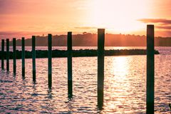 Colorful sunset over Gulf Harbour marine. Mooring poles lined up towards horizon royalty free stock photos