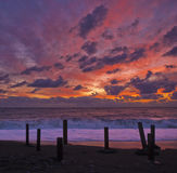 Colorful sunset. On the Black Sea Royalty Free Stock Photo