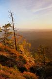 Colorful sunset in a beautiful autumn rocky park. Bended trees on peaks above deep valley. Evening orange sun rays. Colorful sunset in a beautiful autumn rocky Royalty Free Stock Images
