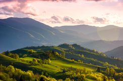 Colorful sunset in Carpathian countryside. Grassy hillsides with some trees in evening light. sky and fluffy clouds in pink light Stock Photo