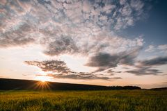 Colorful sunset in the fields. Sun is going down to the hill stock images