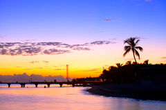 Colorful sunset in Key West Florida. With palm trees silhouettes Stock Photography