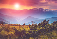 Colorful sunset in the mountains. Dramatic overcast sky Royalty Free Stock Photos