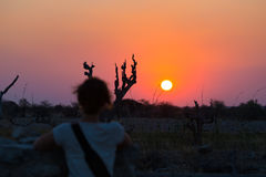 Colorful sunset in the Namib desert, best travel destination in Namibia, Africa. Defocused one person looking at view. Concept of. Adventure and traveling Royalty Free Stock Image