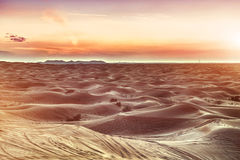 Colorful sunset over desert. Colorful red sunset over desert royalty free stock photography