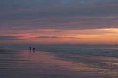 Colorful sunset over Formby Beach. Colorful, pink sunset over Formby Beach Stock Photo