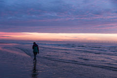 Colorful sunset over Formby Beach. Colorful, pink sunset over Formby Beach Royalty Free Stock Photography
