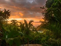 Colorful tropical sunset in Costa Rica. Colorful sunset over palm trees in Manuel Antonio Costa Rica Royalty Free Stock Photo