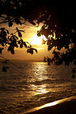 Colorful sunset over sea Pataya beach Thailand Stock Images