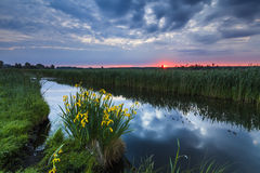 Colorful sunset over the small river. Stock Photography