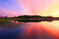 Colorful sunset over water. Scenic view of colorful sunset over lake with trees and reeds reflected on water Stock Images
