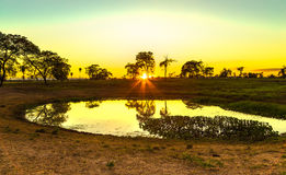 Colorful sunset in Pantanal, Brazil royalty free stock photography