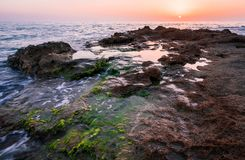 Colorful sunset in a rocky beach full of scum royalty free stock photography