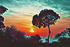 Colorful sunset sky with tree silhouette digital illustration. Summer travel on tropical island. Stock Image