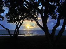 Colorful sunset between the trees along the bay Royalty Free Stock Photos