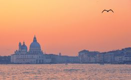 Colorful sunset on Venice and Canal Grande with Santa Maria della Salute church, Italy royalty free stock photography