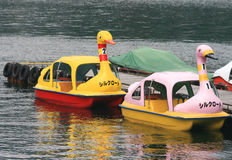 Colorful Swan Boats for Rent Royalty Free Stock Photos
