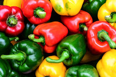 Colorful sweet bell peppers Stock Image