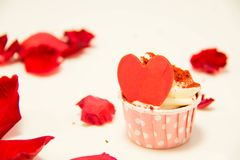 Colorful of sweet cup cake Stock Images