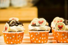Colorful of sweet cup cake Stock Image
