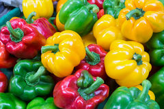 Colorful sweet peppers. Colorful bell peppers ready for sales in fresh market, Bangkok, Thailand Royalty Free Stock Images