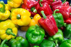 Colorful sweet peppers stock images