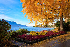 Colorful swiss landscape stock images