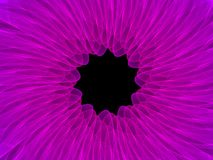 Colorful symmetrical abstract background. Intricate details Royalty Free Stock Images