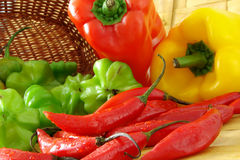 Colorful tasty peppers. Many colorful peppers composition in a kitchen Stock Image