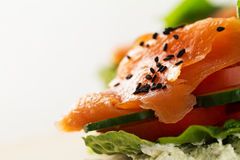 Colorful tasty salted salmon with vegetables on sandwich. Bright Royalty Free Stock Photo