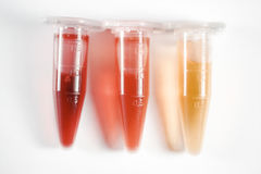 Colorful test tubes royalty free stock image